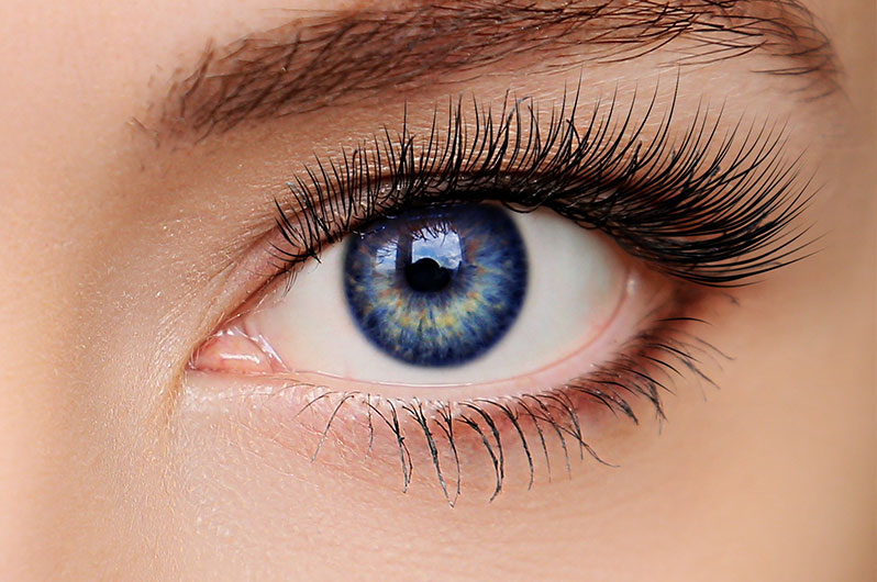 William James Hair & Skin Studio Eyelash Tinting